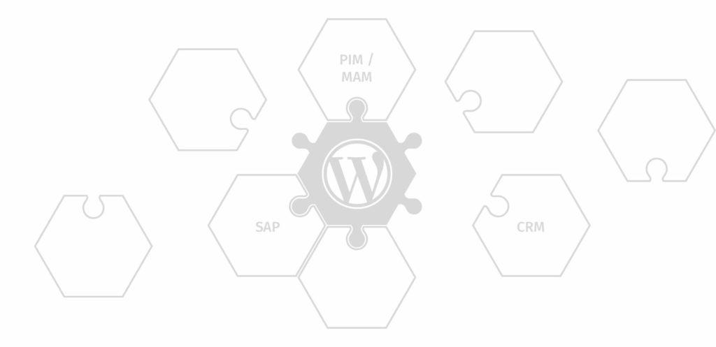 WordPress Schnittstellen zu WaWi, PIMs und anderen Drittsystemen. WordPress SAP Schnittstellen, sind ebenfalls möglich.