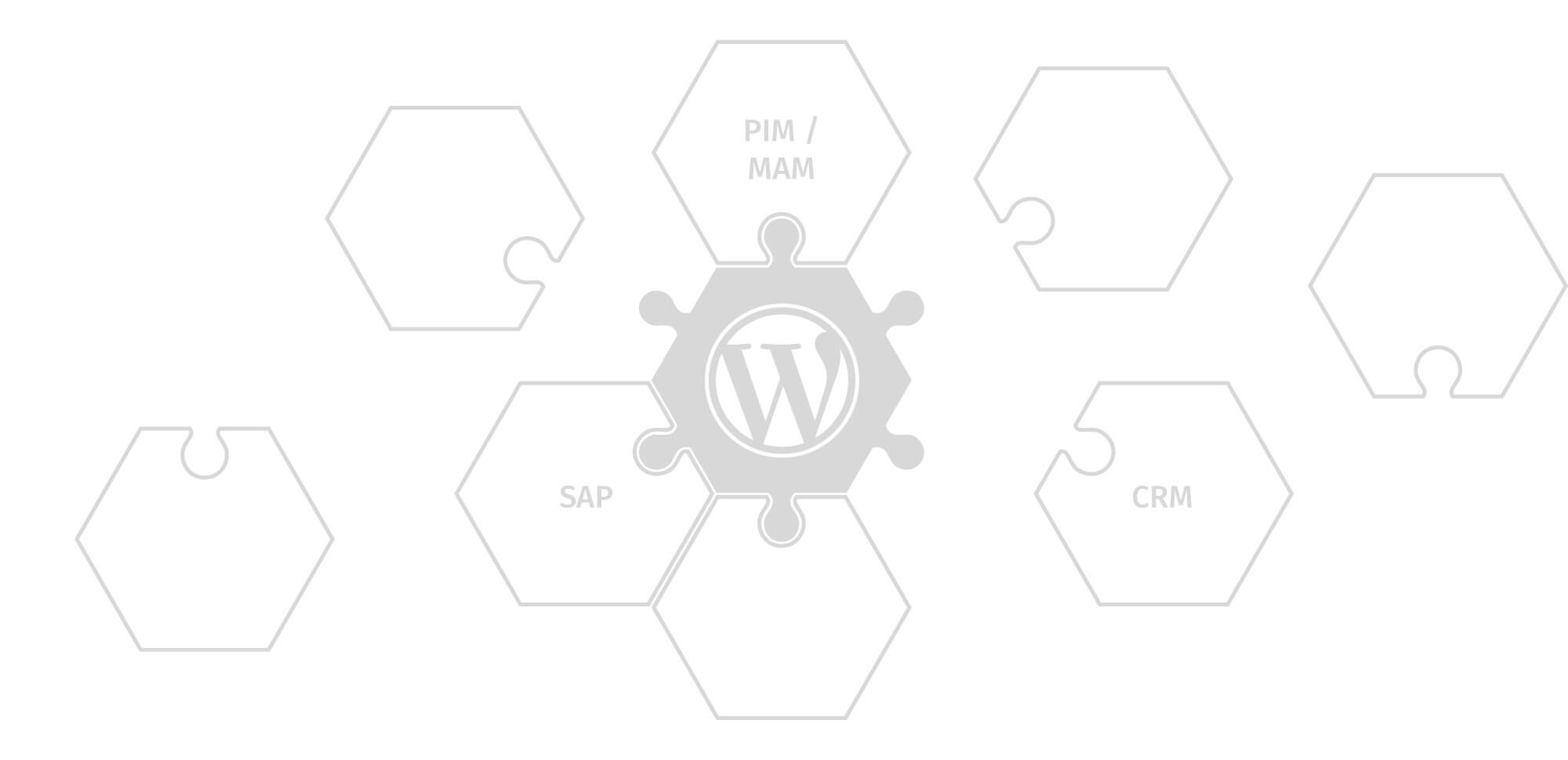 WordPress interfaces: WordPress SAP, WooCommerce SAP, WordPress enterprise resource planning - the WordPress agency creates individual WordPress integrations.