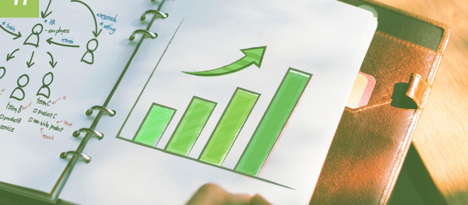 Internationaler Webshop – 40% Umsatzsteigerung erzielen! 1/2