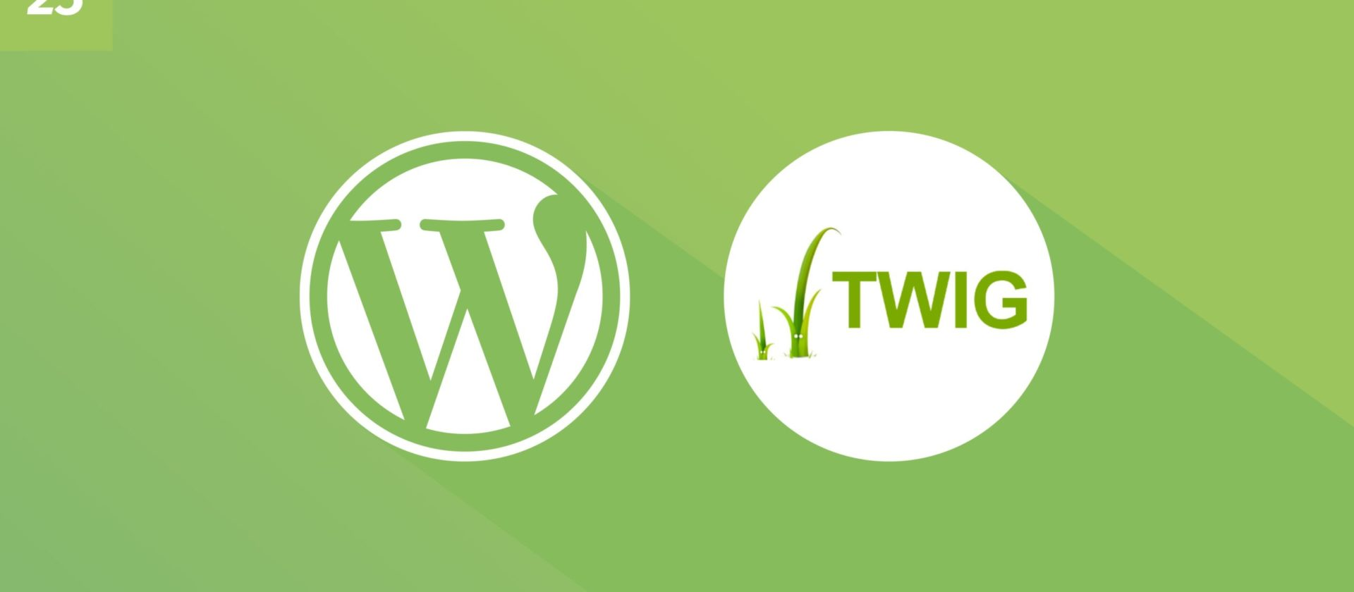 WordPress und Twig: Wie man Data von Views trennt